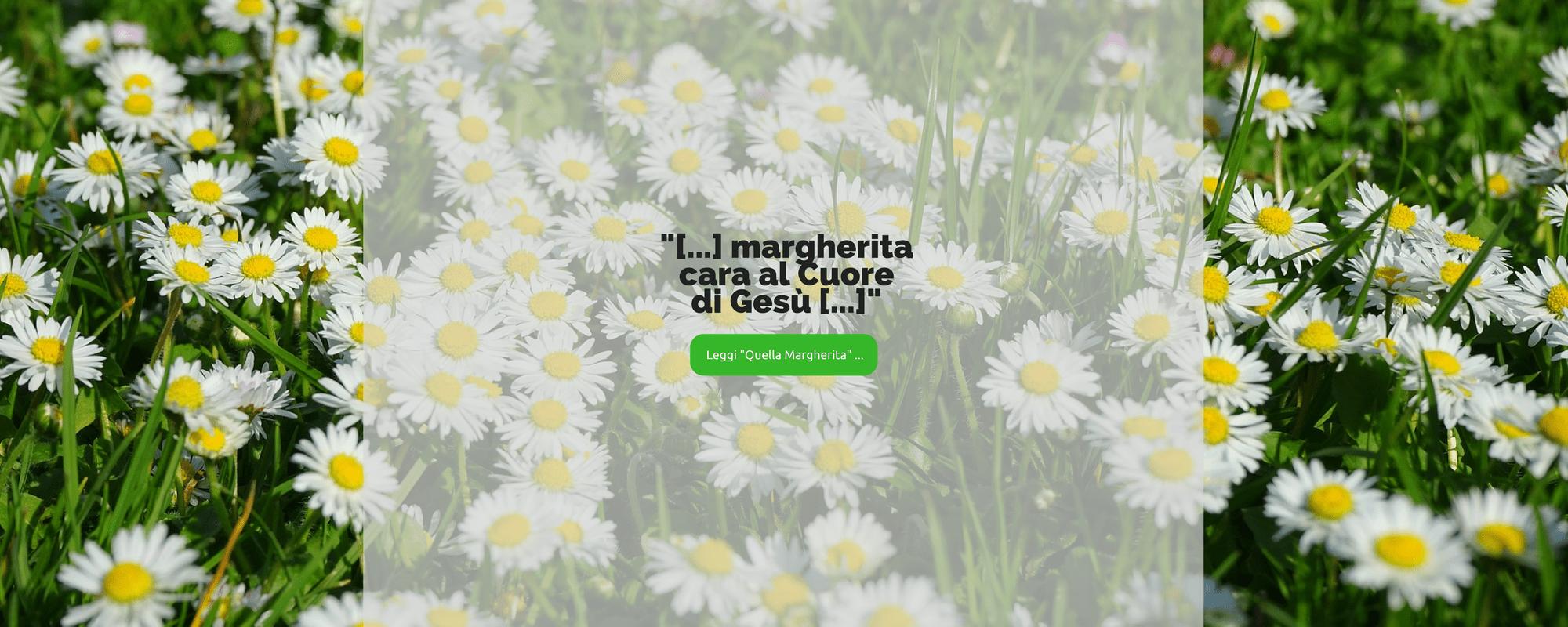 002_Slider_Margherita-al-Cuore-di-Gesu-min